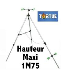 TRIPOD / TREPIED 2 CANNES SURF TORTUE LUXE